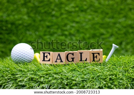 """Golf ball with word EAGLE are on green grass. An """"eagle"""" in golf means a score 2-under par on each hole.  Foto stock ©"""