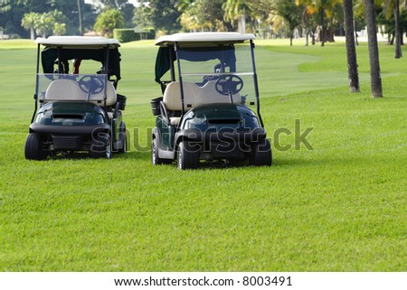 Golf Carts at your Service