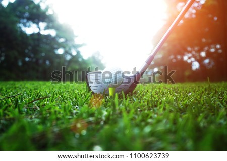 golf club and golf ball close up in grass field with sunset. Golf ball close up in golf coures at Thailand #1100623739