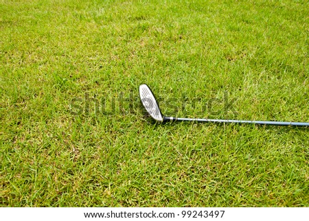 Golf club laying on the grass