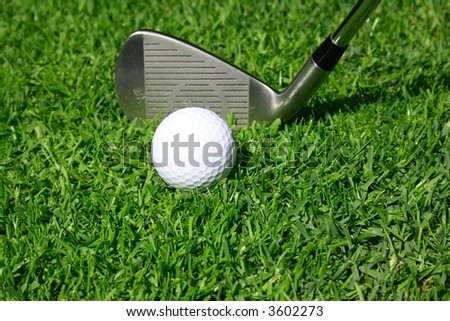 Golf club with golf ball on a grass