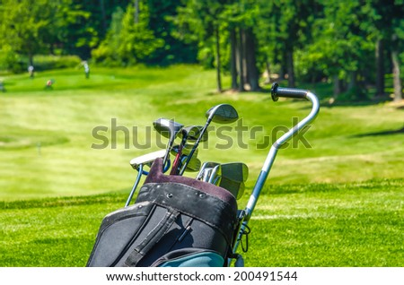 Golf clubs in the bag at the beautiful golf course. Fragment.