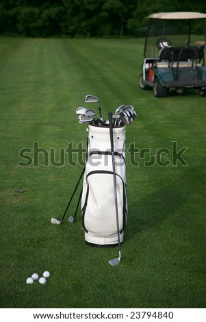 Golf-clubs with bag and golf-car. Focus on bag