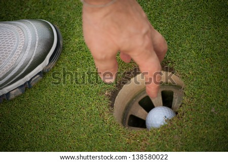 Golf course ball in the hole