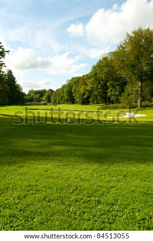 Golf Course In Forest