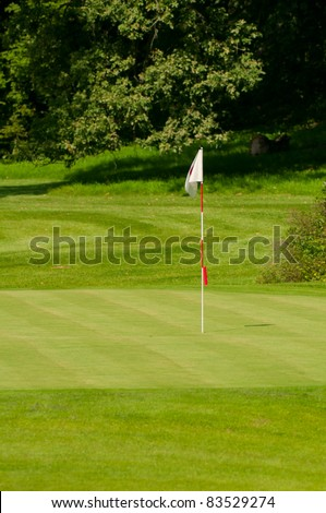 Golf Course in Forest - Golf Green With Flag