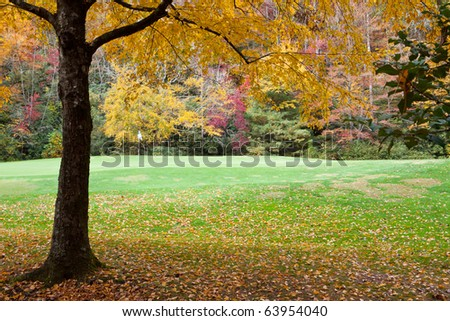 Golf course pin and flag surrounded by autumn foliage - stock photo