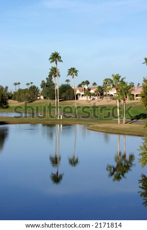 Golf Course pond with palm trees reflection in the water