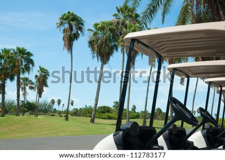 Golf course with golf carts lined up and ready.