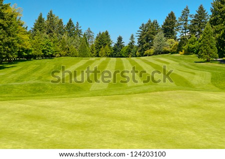Golf course with gorgeous green over blue sky