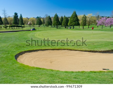 Golf course with the bunker  at the cherry blossom time