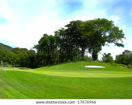 golf fairway and bunker with large tree in the background blue sky