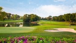 golf field summer landscape