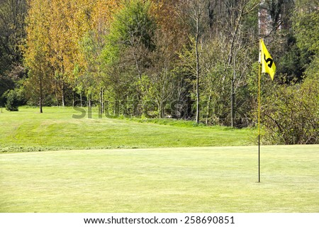 Golf flag on field and trees on background