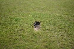 golf iron swing after divot mark