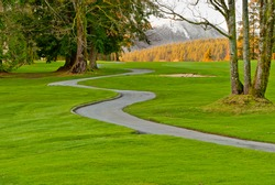 Golf place with nice green and curved path over fall forest and snow mountain.