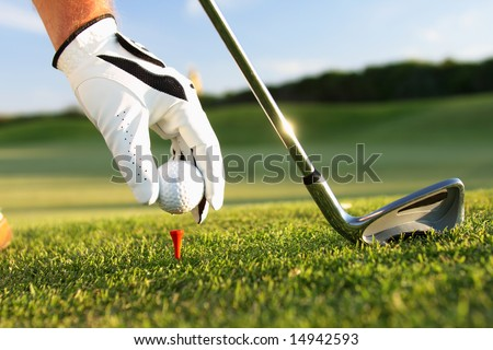golf tee - stock photo
