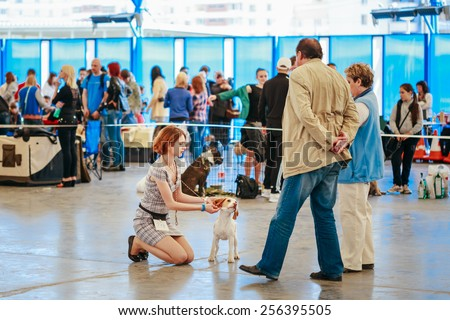 GOMEL, BELARUS - MAY 11, 2015: People and dogs visit exhibition International dog show, important event dedicated to dogs and their owners.