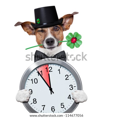 good luck chimney sweeper dog with hat and clock five minutes