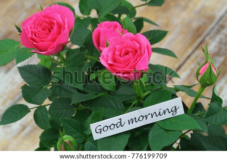 Free Photos Spring Flowers With Good Morning Note Avopix Com