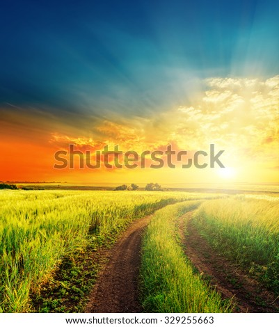 good sunset and road in green fields #329255663