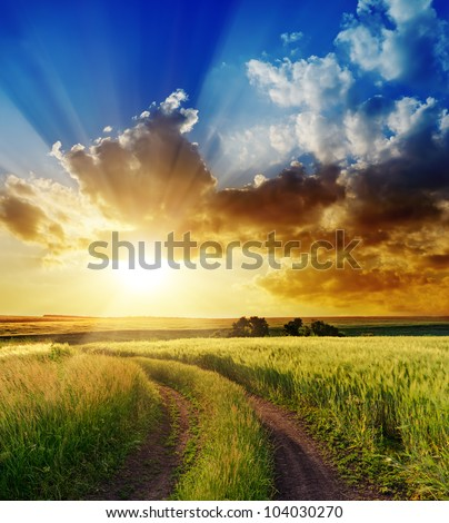 good sunset over rural road - stock photo