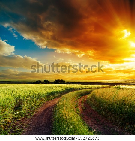 good sunset over winding road in field #192721673
