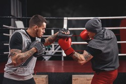 Good uppercut to the paw. Side view of muscular athlete in boxing gloves training on boxing paws while standing in boxing gym
