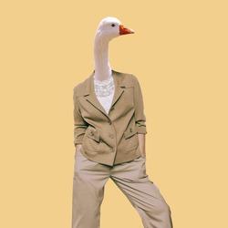 Goose. Vintage clothing. Art collage. Minimal fun