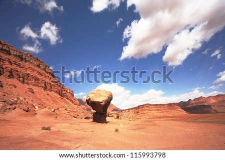 "Gorgeous American Red Desert. A huge ""mushroom"" of the red sandstone"