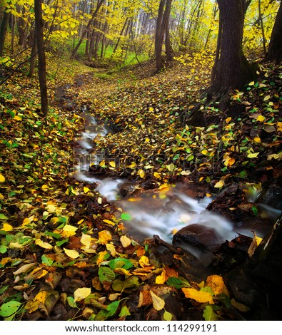 Gorgeous autumn wood with stream, yellow fallen leaves in forest. Vertical panorama. Long exposure - stock photo