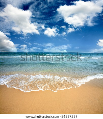 Gorgeous Beach in Summertime ,beach and tropical sea
