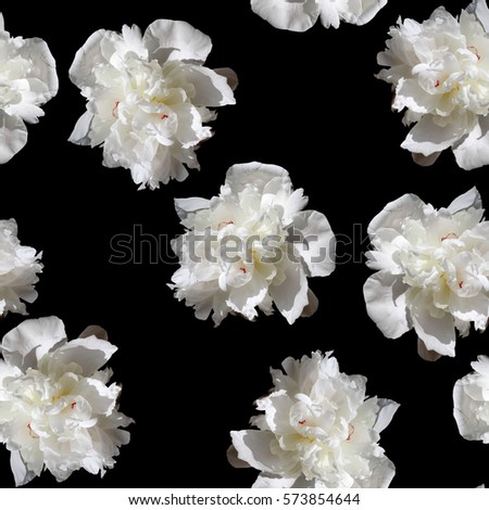 Gorgeous floral blossom pattern peonies amazing collage photo artistic work seamless bloom background.
