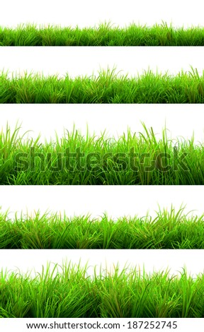 gorgeous green grass summer isolated on white background - Shutterstock ID 187252745