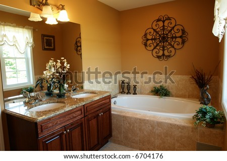 Gorgeous Master Bathroom With Jacuzzi Tub Stock Photo 6704176 ...