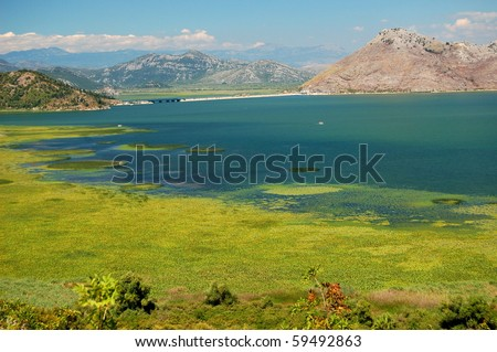 Gorgeous picturesque scene of Lake Skadar in Montenegro