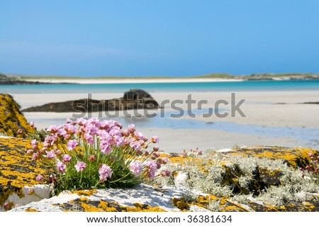 Gorgeous sandy beach of Clifden in Connemara on the west coast of Ireland