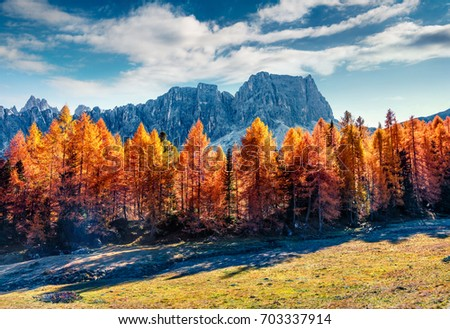 Gorgeous sunny view of Dolomite Alps with yellow larch trees. Colorful autumn scene of Ponta dei Lastoi mountain range. Giau pass location, Italy, Europe. Beauty of nature concept background.