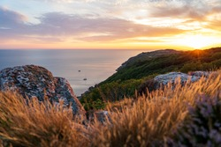 Gorgeous sunset at Kullaberg nature reserve in south Sweden. Blurred foreground. Selective focus.