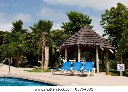 gorgeous swimming pool area with chairs and big umbrella or bungalow on a tropical resort (surrounded by palm trees)