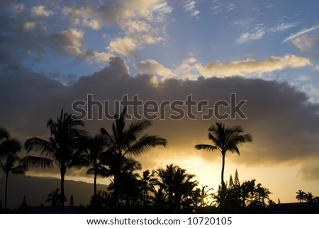 Gorgeous tropical sunset behind palms and mountains.