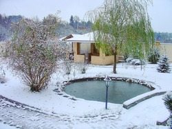 Gorgeous winter view of exterior of a private garden.Landscape design. Pond. Decorative pool with rocks and green plants. Winter day.