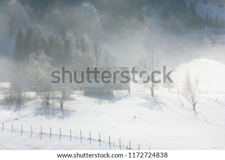 Gorgeous wintry scene. Beautiful landscape. Forest day. #1172724838