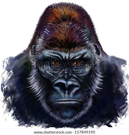 gorilla digital painting, gorilla male