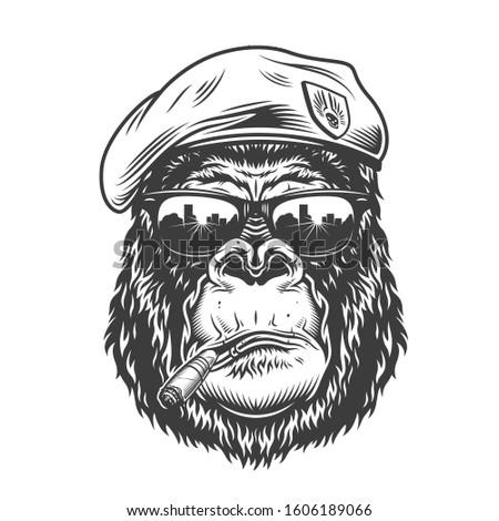 Gorilla head in monochrome style in beret. illustration