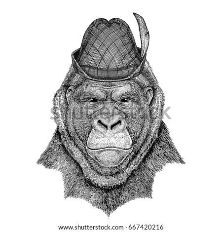 gorilla  monkey  ape frightful...