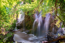Gorman Falls, Colorado Bend State Park, in the Texas Hill Country flows rapidly after rainfall down a cliff of green moss and rocks.