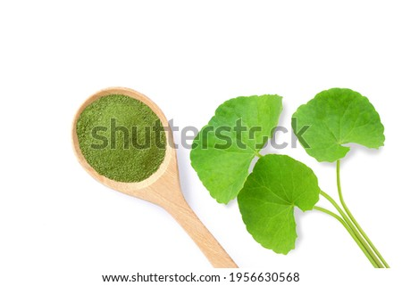 Gotu Kola leaf ( Asiatic pennywort, Indian pennywort, Centella asiatica ) and herbal powder in wooden spoon isolated on white background. Top view. Flat lay. Zdjęcia stock ©