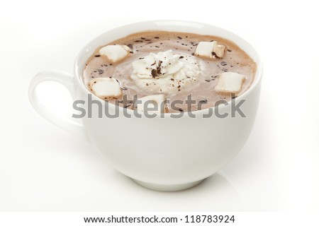 Gourmet Hot Chocolate with marshmallows and cinnamon
