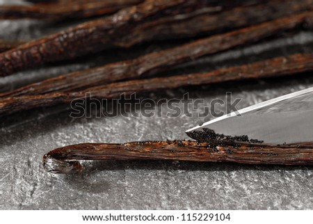 Gourmet Madagascar vanilla beans being split open with a knife to expose the tiny flavor filled seeds.  Pods are resting on a slate cutting board.  Macro with shallow dof.